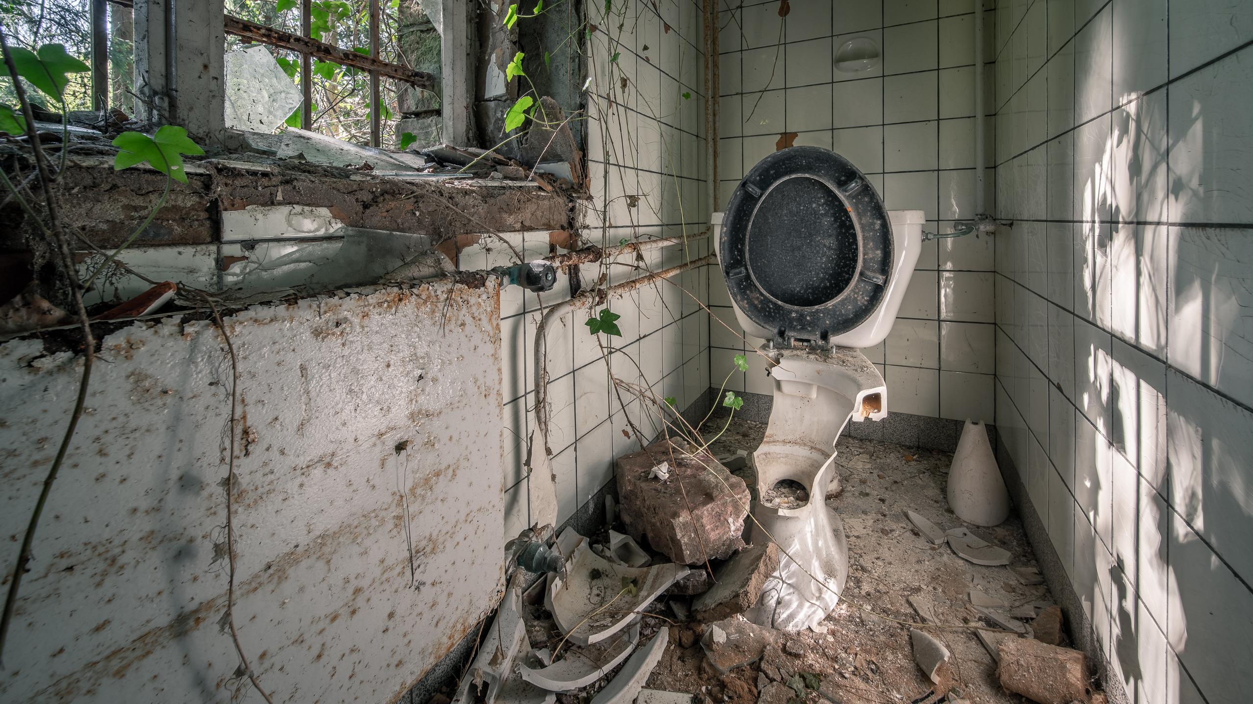 Toilette / 20190420104656