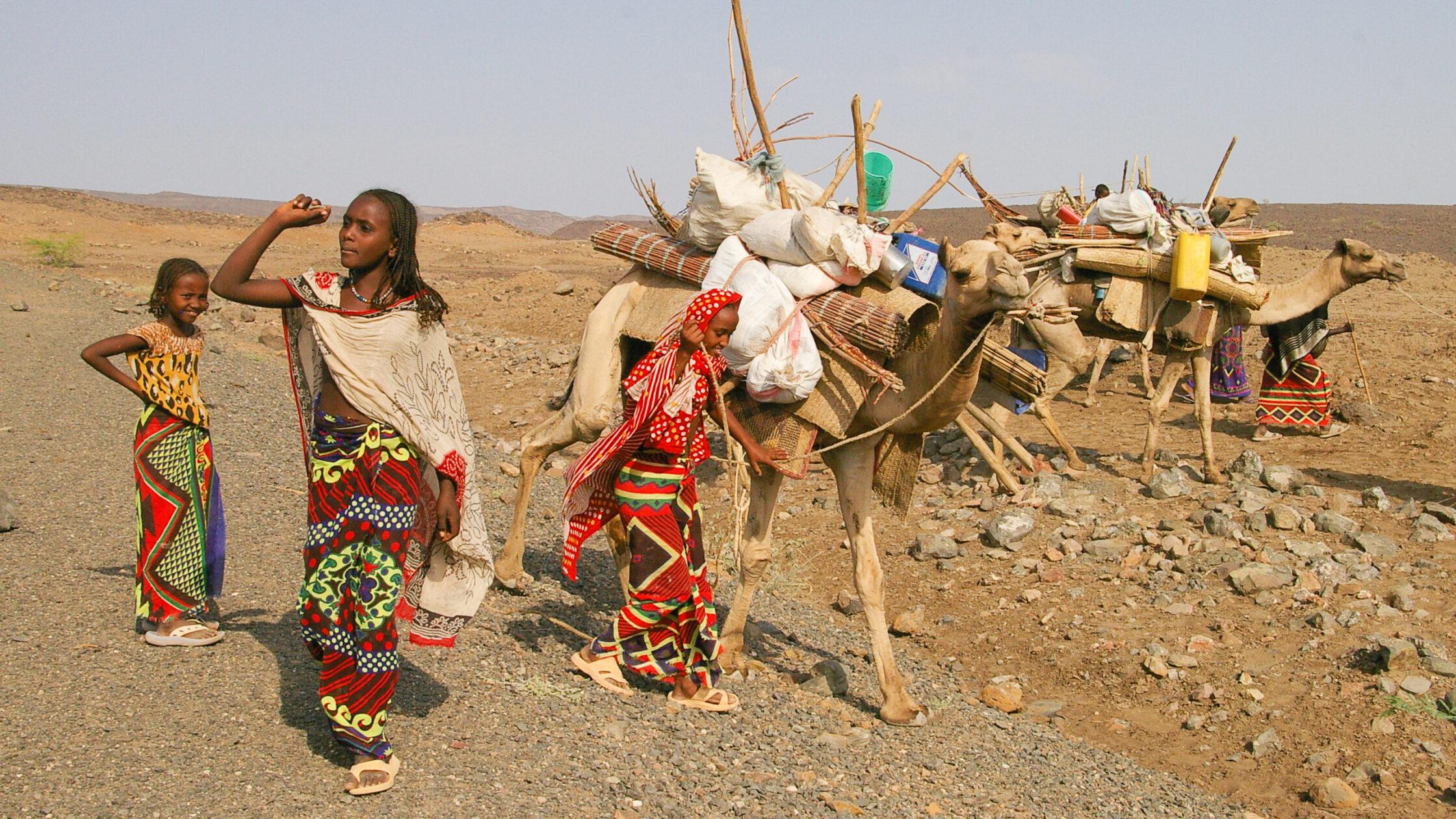 Northern Ethiopia / 20200329111000